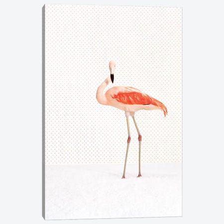 Flamingo V-II Canvas Print #CTL47} by Catherine Ledner Canvas Wall Art