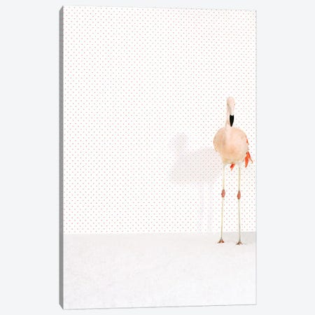 Flamingo VII Canvas Print #CTL50} by Catherine Ledner Canvas Wall Art