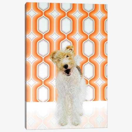 Fox Terrier Canvas Print #CTL52} by Catherine Ledner Canvas Art