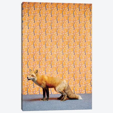 Fox II Canvas Print #CTL53} by Catherine Ledner Canvas Art