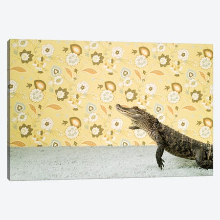 Jumping Gator Canvas Print #CTL65} by Catherine Ledner Canvas Art