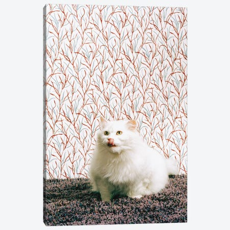 Kitty Kitty Canvas Print #CTL69} by Catherine Ledner Art Print