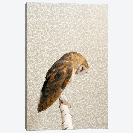 Owl Head Down Canvas Print #CTL99} by Catherine Ledner Canvas Wall Art