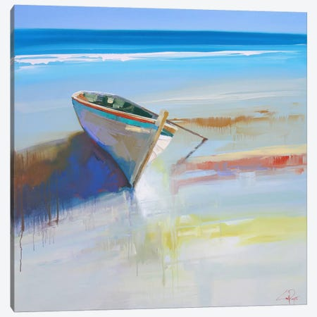 Low Tide II Canvas Print #CTP14} by Craig Trewin Penny Art Print