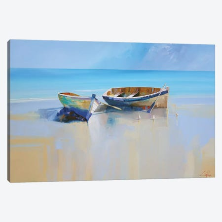 Afternoon Gulls Canvas Print #CTP1} by Craig Trewin Penny Canvas Artwork