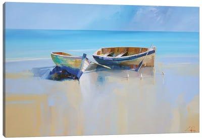 Afternoon Gulls Canvas Art Print