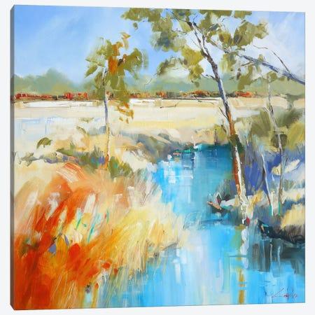 Summer Water II Canvas Print #CTP20} by Craig Trewin Penny Canvas Art Print