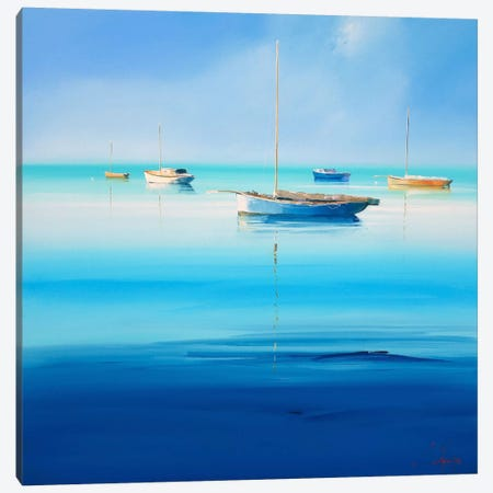 Blue Couta I Canvas Print #CTP2} by Craig Trewin Penny Canvas Art