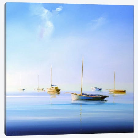 Blue Couta II Canvas Print #CTP3} by Craig Trewin Penny Canvas Artwork