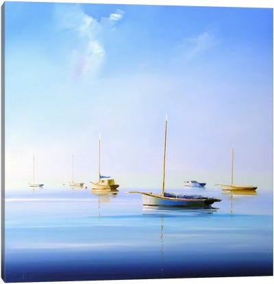 Blue Couta II Canvas Art Print