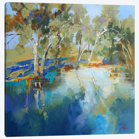 Cobram Creek Canvas Print #CTP5} by Craig Trewin Penny Canvas Print