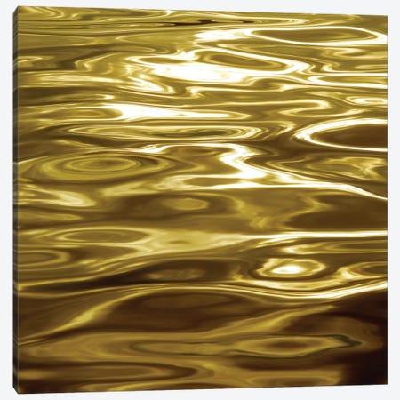 Liquid Gold Canvas Print #CTR12} by Charlie Carter Canvas Art