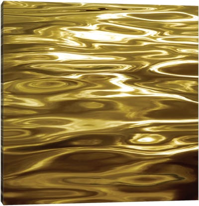 Liquid Gold Canvas Art Print