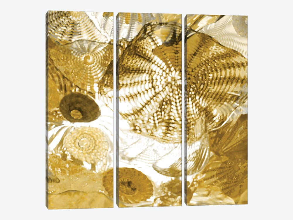 Underwater Perspective In Gold by Charlie Carter 3-piece Art Print