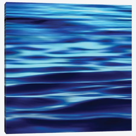 Deep Blue Sea Canvas Print #CTR9} by Charlie Carter Canvas Art
