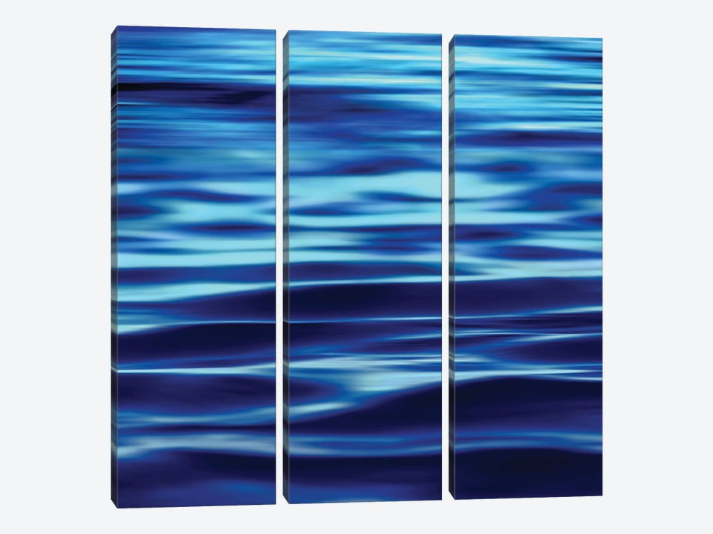 Deep Blue Sea by Charlie Carter 3-piece Canvas Art