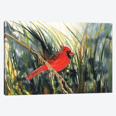 Cardinal Waiting Canvas Print #CTW10} by Christine Reichow Canvas Art Print