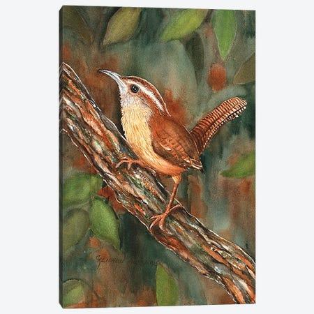 Carolina Wren Canvas Print #CTW11} by Christine Reichow Canvas Art Print