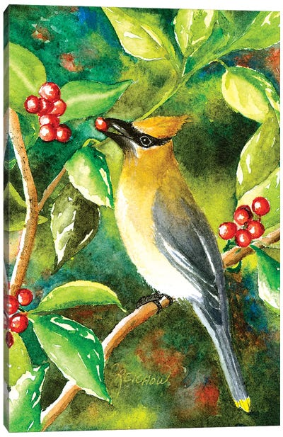 Cedar Wax Wing Canvas Art Print