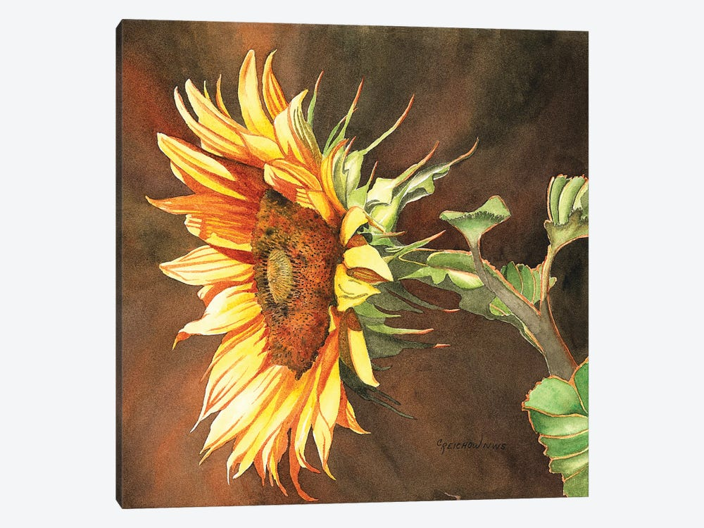 Here Comes The Sun by Christine Reichow 1-piece Canvas Print