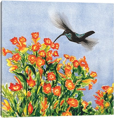 Humming Along Canvas Art Print