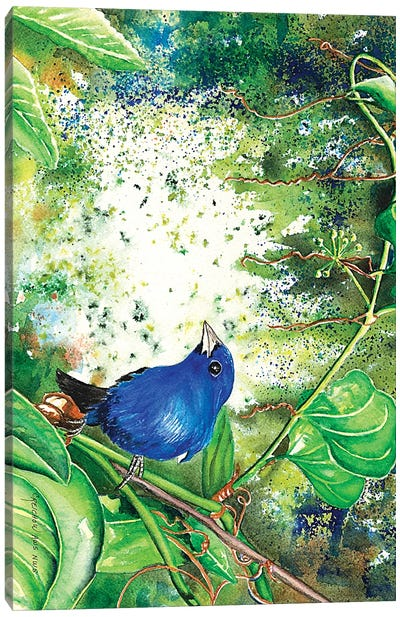 Indigo Bunting Canvas Art Print