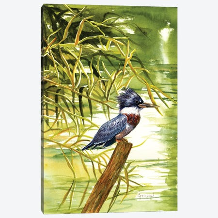 Lady Kingfisher Canvas Print #CTW32} by Christine Reichow Canvas Art Print