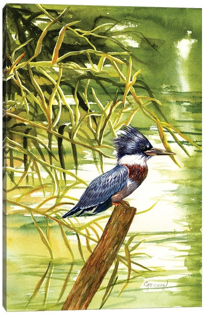 Lady Kingfisher Canvas Art Print