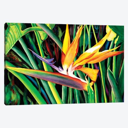 Living Color Canvas Print #CTW33} by Christine Reichow Canvas Art Print