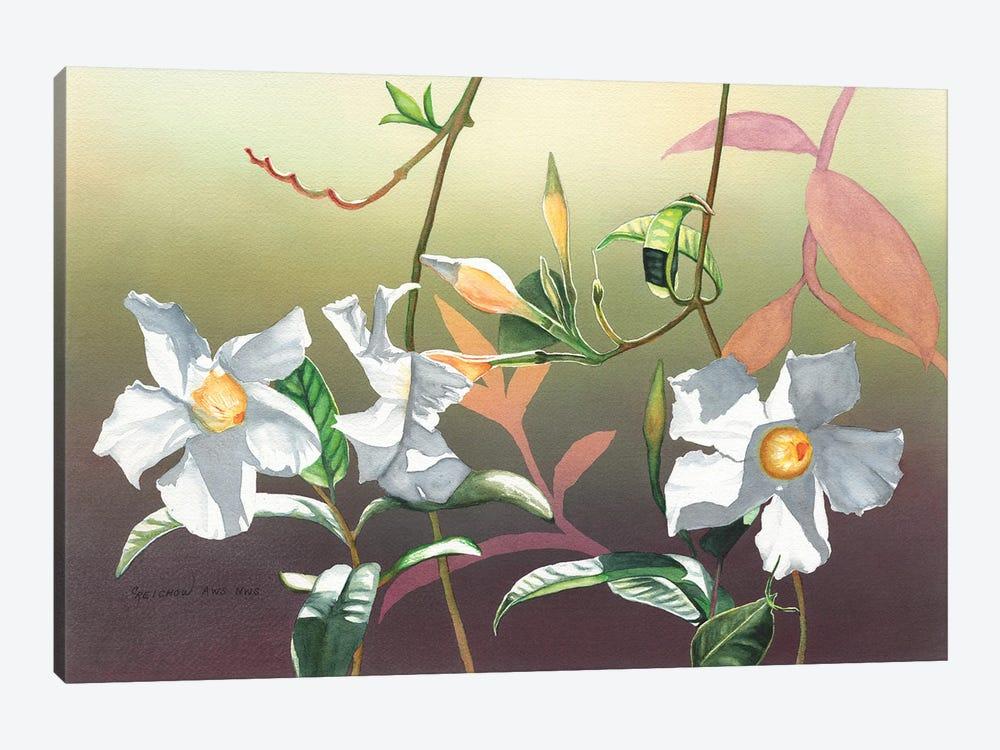 Luminosity by Christine Reichow 1-piece Canvas Print