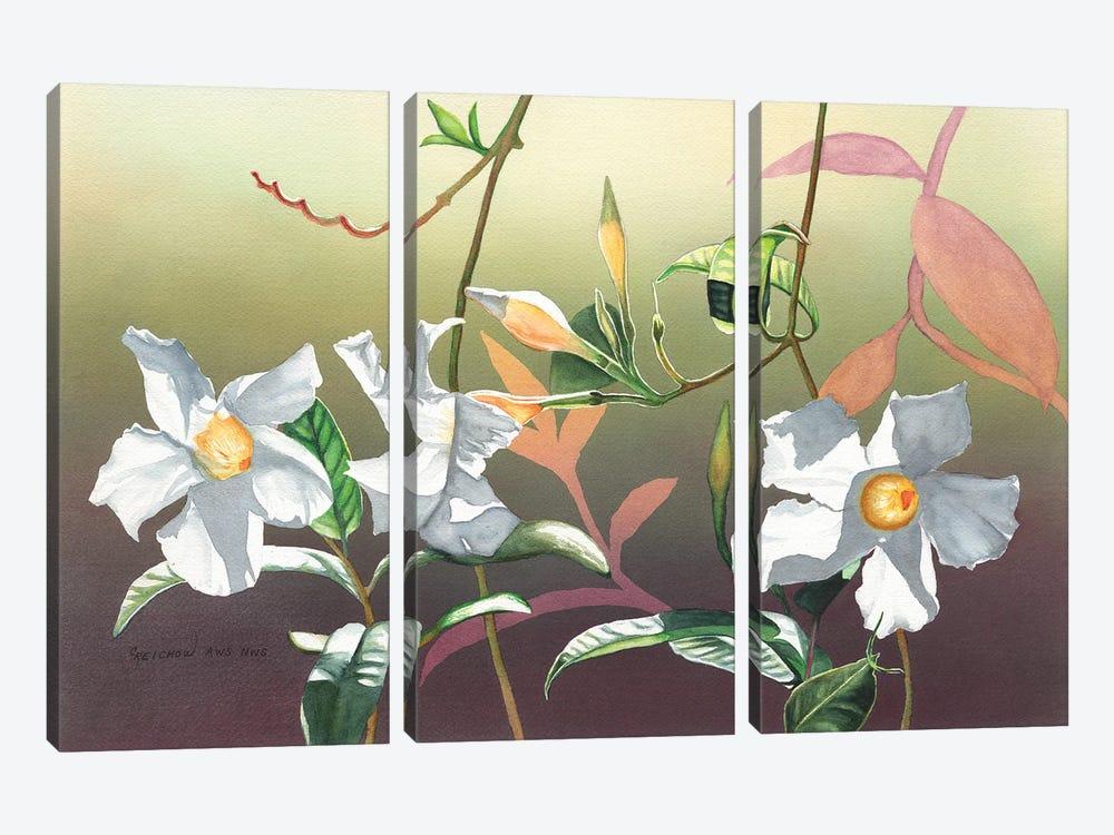 Luminosity by Christine Reichow 3-piece Art Print