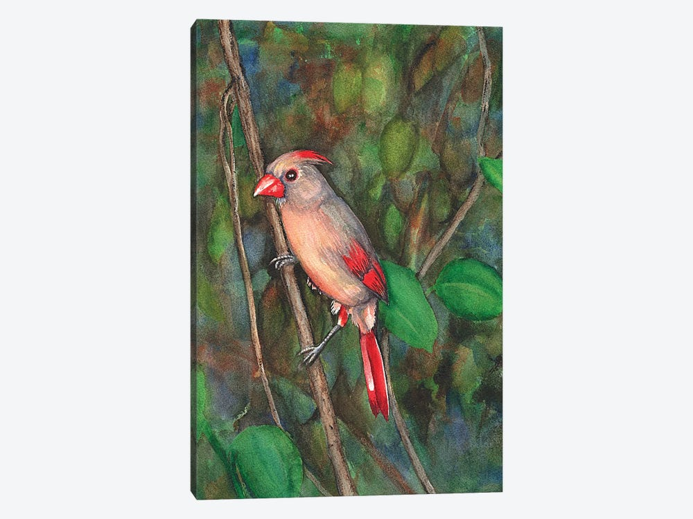 Mrs Cardinal by Christine Reichow 1-piece Canvas Art
