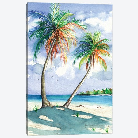 Palm Shadows Canvas Print #CTW44} by Christine Reichow Canvas Print