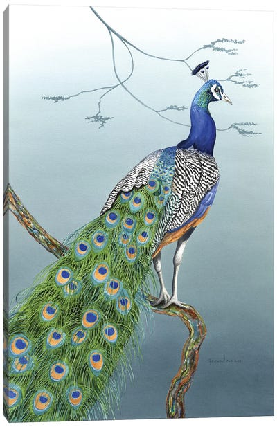 Proud As A Peacock Canvas Art Print