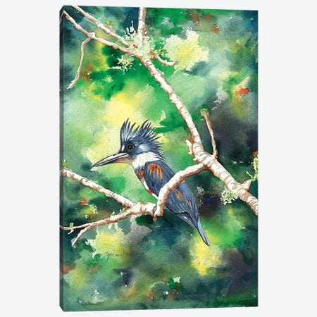 Quizzical Kingfisher Canvas Print #CTW49} by Christine Reichow Canvas Wall Art