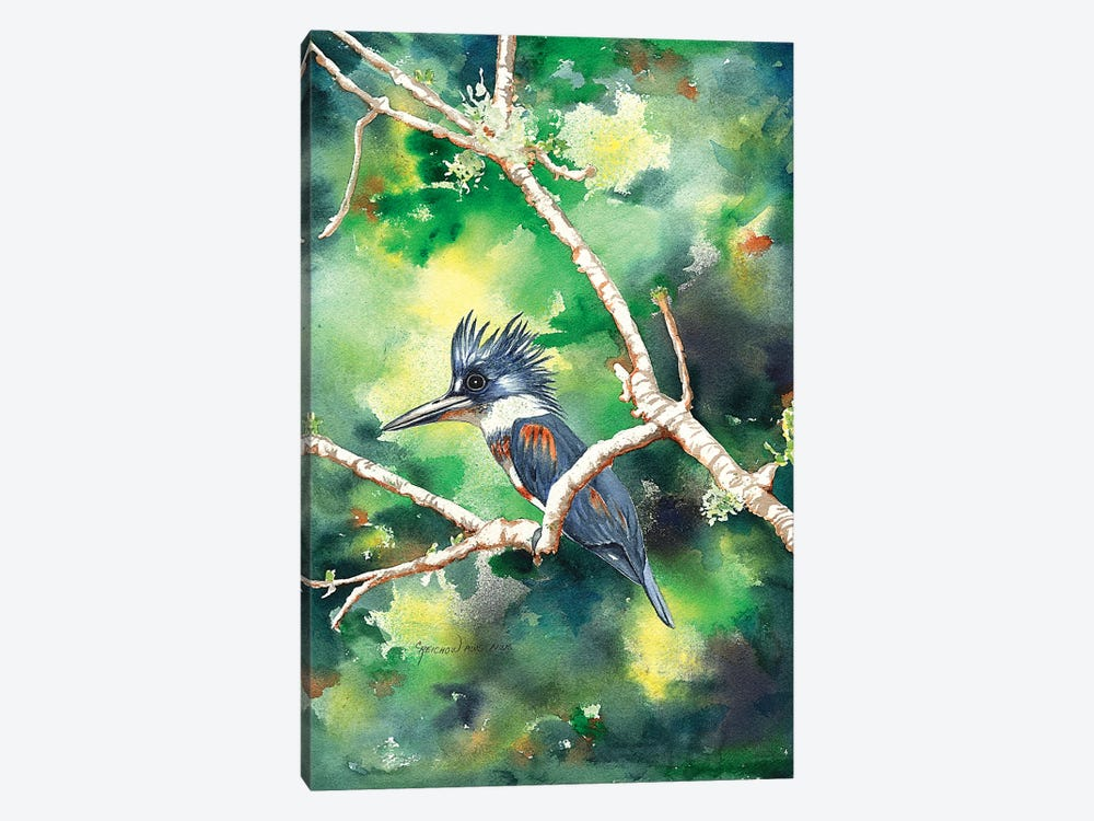 Quizzical Kingfisher by Christine Reichow 1-piece Canvas Artwork