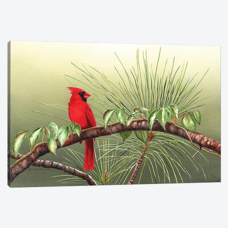 Sitting On The Bough Of The Day Canvas Print #CTW58} by Christine Reichow Canvas Print