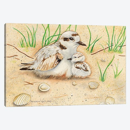 Snowy Plover Mom And Chick Canvas Print #CTW59} by Christine Reichow Canvas Art Print