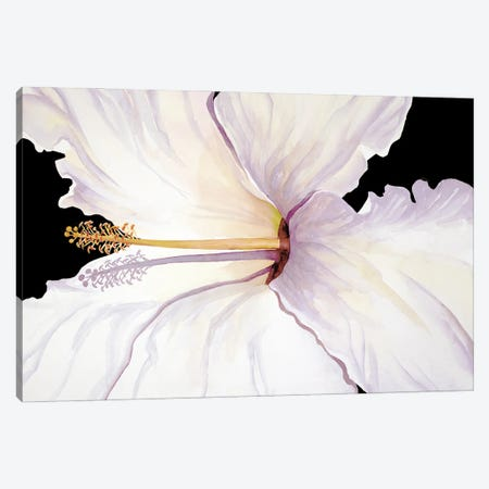 Tropical Sunbather Canvas Print #CTW65} by Christine Reichow Canvas Print