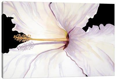 Tropical Sunbather Canvas Art Print