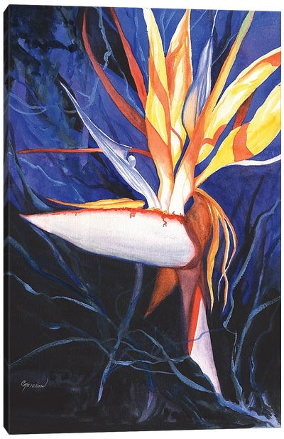 Wild And Hot Canvas Art Print