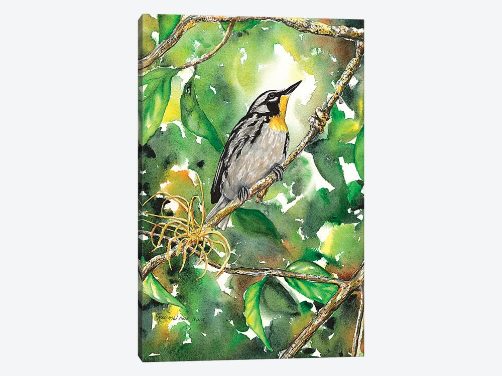 Yellow Throated Warbler by Christine Reichow 1-piece Canvas Print