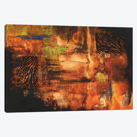 Fire Dancer Canvas Print #CTW78} by Christine Reichow Art Print