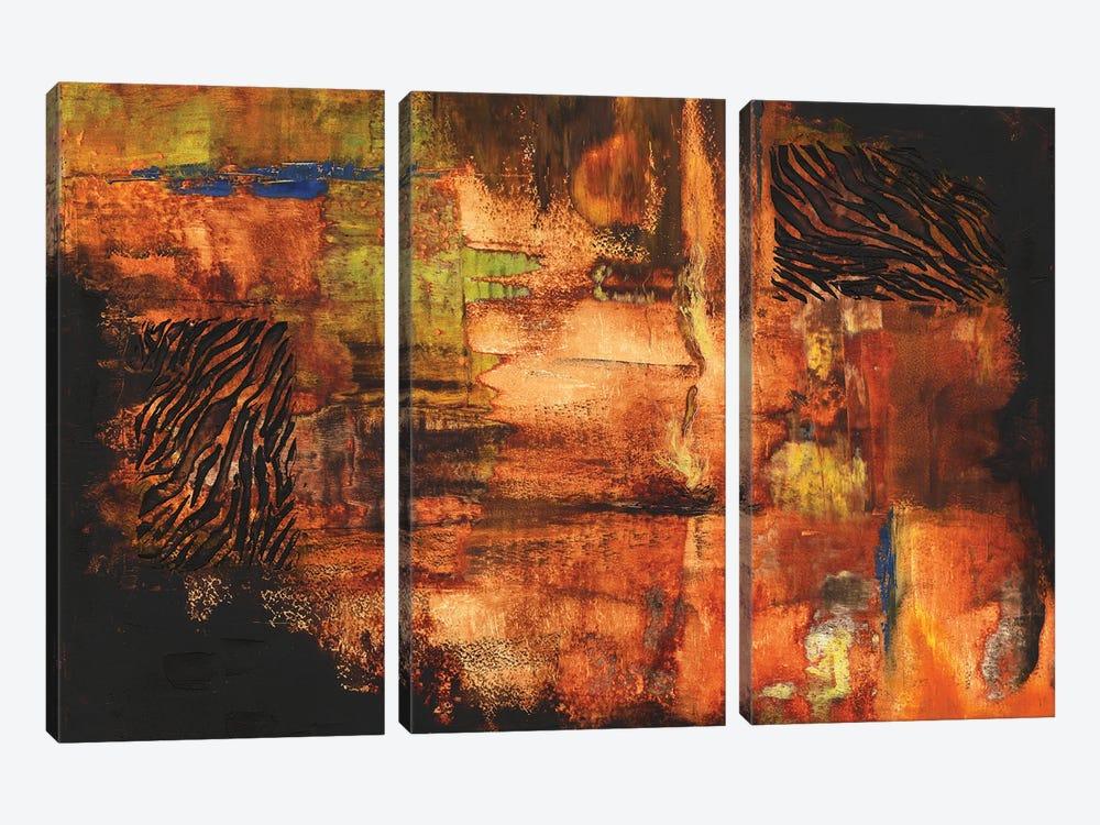 Fire Dancer by Christine Reichow 3-piece Canvas Art