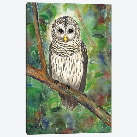 Barred Owl Canvas Print #CTW7} by Christine Reichow Canvas Wall Art