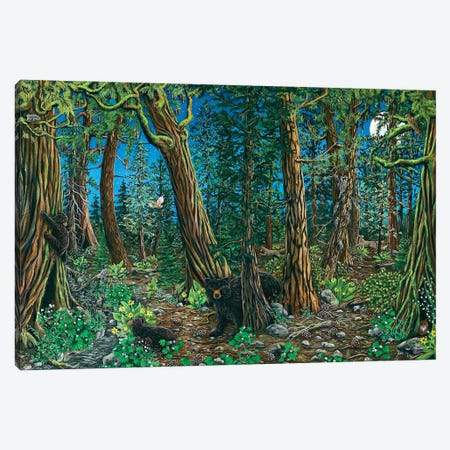 Spirit Of The Forest Canvas Print #CTY13} by Cathy McClelland Art Print