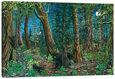Spirit Of The Forest Canvas Art Print