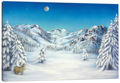 The Cry Of Squaw Valley Canvas Art Print