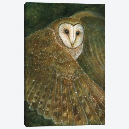 Night Spirit Canvas Print #CTY23} by Cathy McClelland Canvas Art