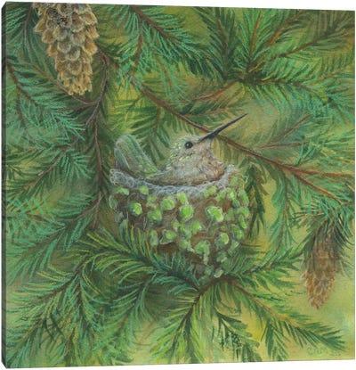 Forest Hummer Canvas Art Print